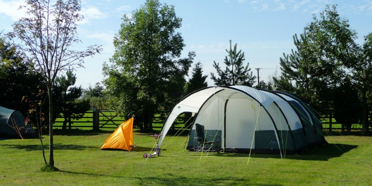 Tent Pitch - Beeches Croft 2