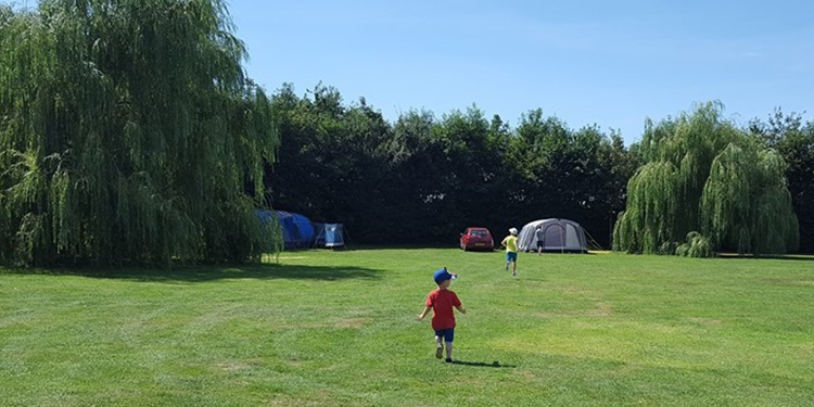 Tent Pitches in Cherry Meadows