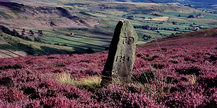 This is Yorkshire - North York Moors